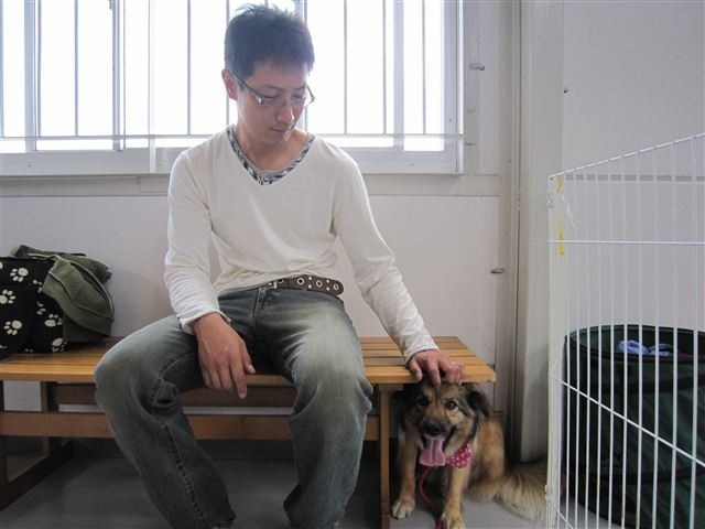 f:id:yasukazu01:20110521102840j:image