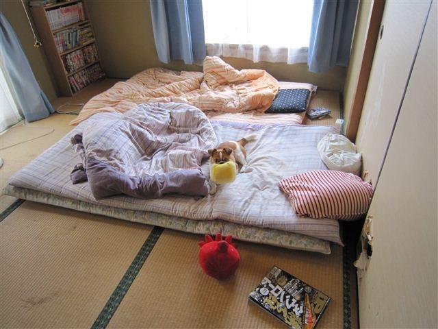 f:id:yasukazu01:20110524125641j:image