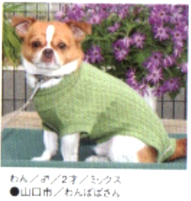 f:id:yasukazu01:20110527215656j:image
