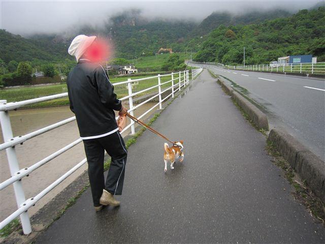 f:id:yasukazu01:20110528135805j:image