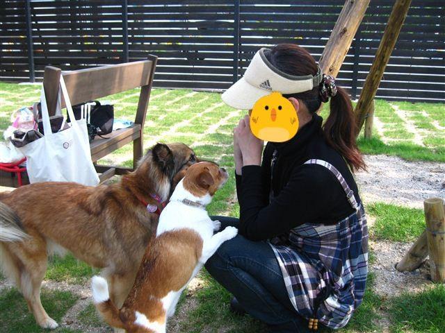 f:id:yasukazu01:20110601144724j:image