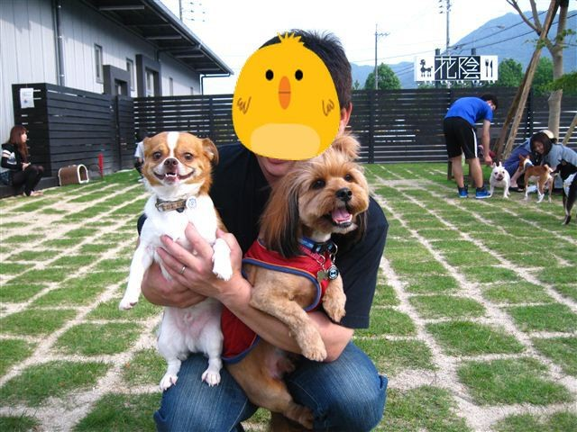 f:id:yasukazu01:20110604165331j:image