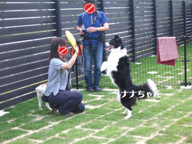 f:id:yasukazu01:20110604173319j:image