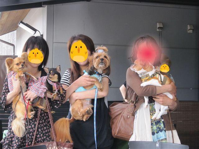 f:id:yasukazu01:20110613123429j:image
