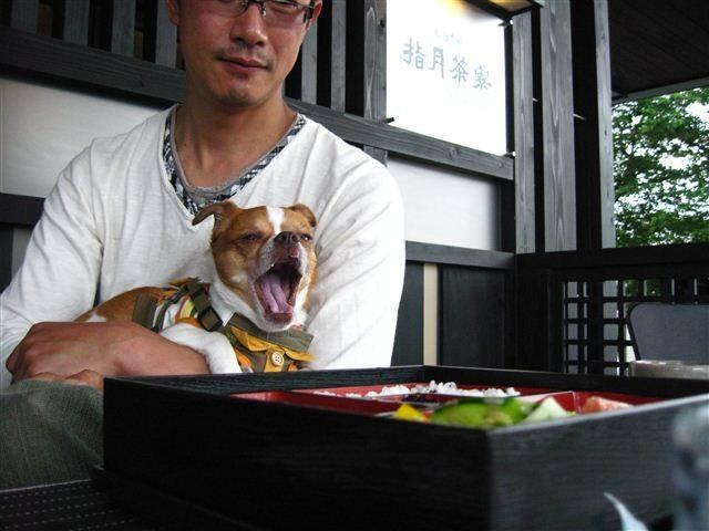 f:id:yasukazu01:20110613130445j:image
