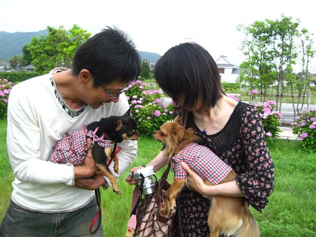 f:id:yasukazu01:20110613135715j:image