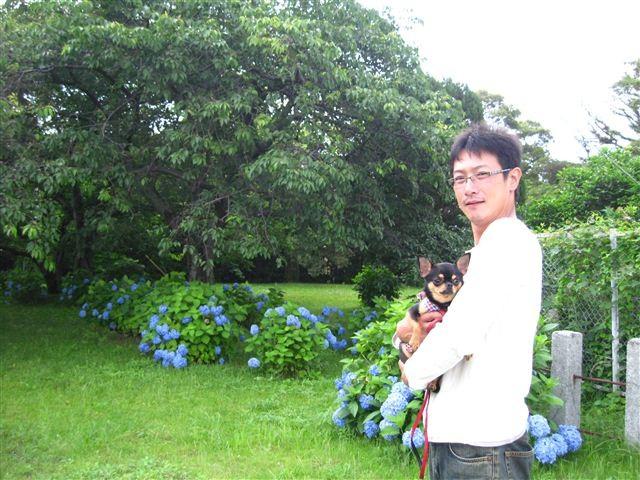 f:id:yasukazu01:20110613135802j:image