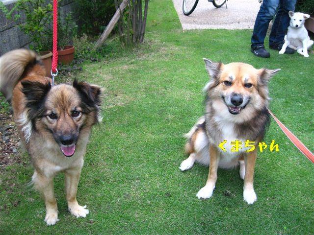 f:id:yasukazu01:20110618181809j:image