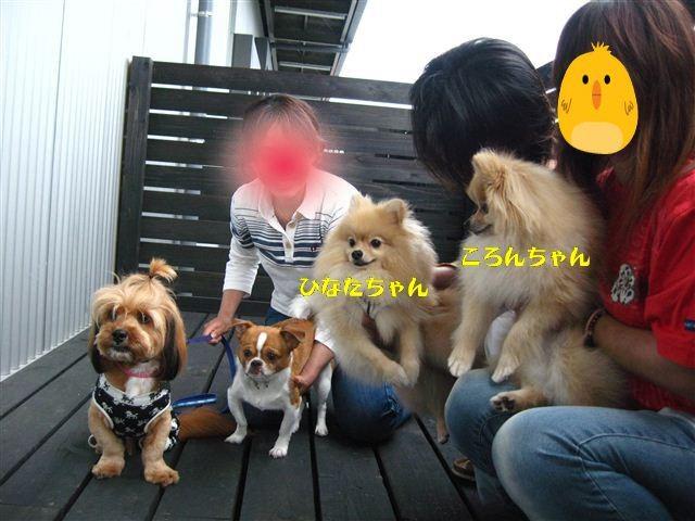 f:id:yasukazu01:20110619125647j:image