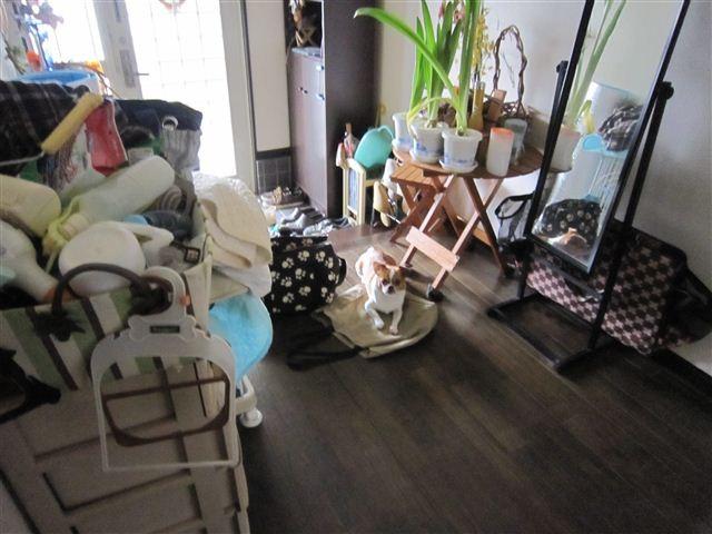 f:id:yasukazu01:20110701130312j:image