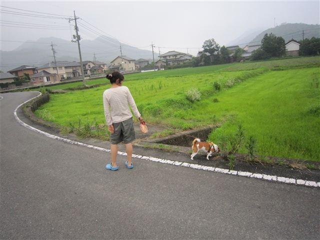 f:id:yasukazu01:20110701184711j:image