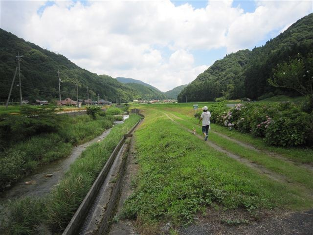 f:id:yasukazu01:20110715114501j:image