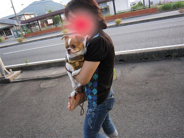f:id:yasukazu01:20110723183002j:image