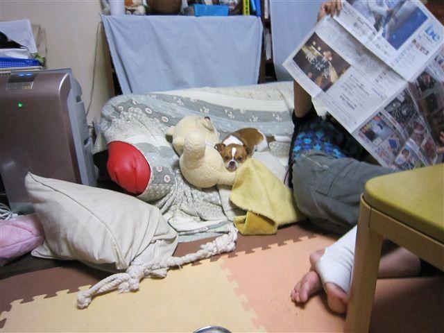 f:id:yasukazu01:20110723200129j:image