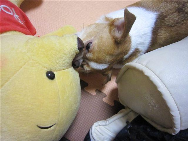 f:id:yasukazu01:20110728214616j:image