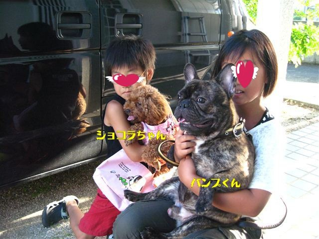 f:id:yasukazu01:20110803174609j:image