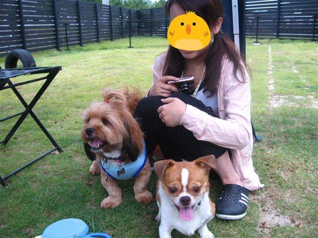 f:id:yasukazu01:20110814102346j:image