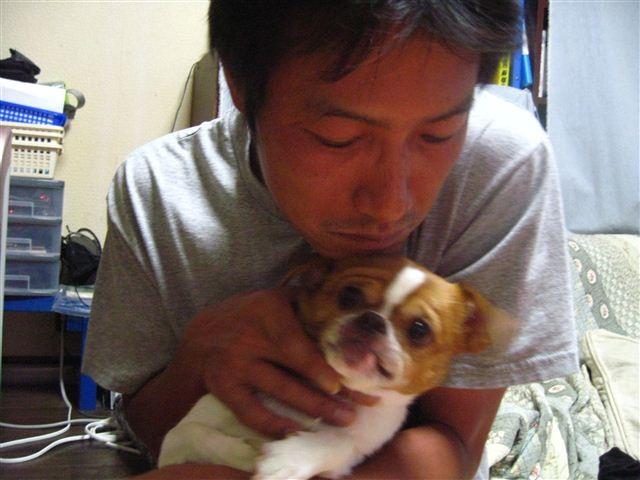 f:id:yasukazu01:20110818213855j:image