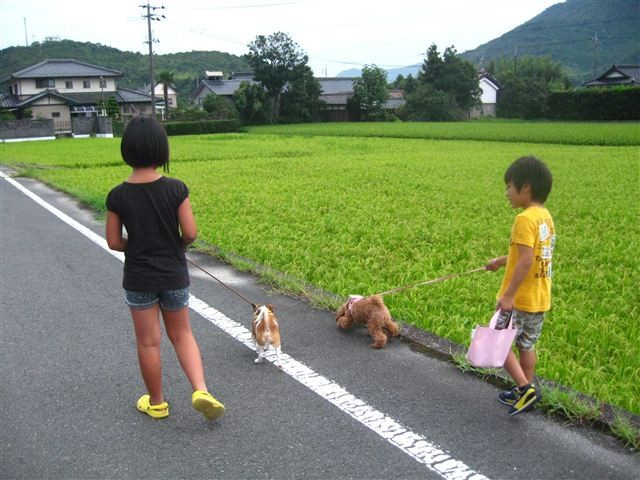 f:id:yasukazu01:20110820180826j:image