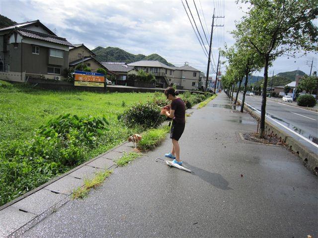 f:id:yasukazu01:20110821092033j:image