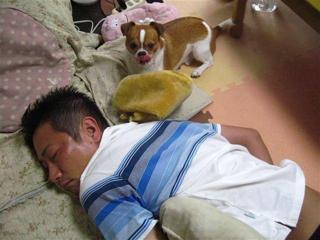 f:id:yasukazu01:20110827184839j:image