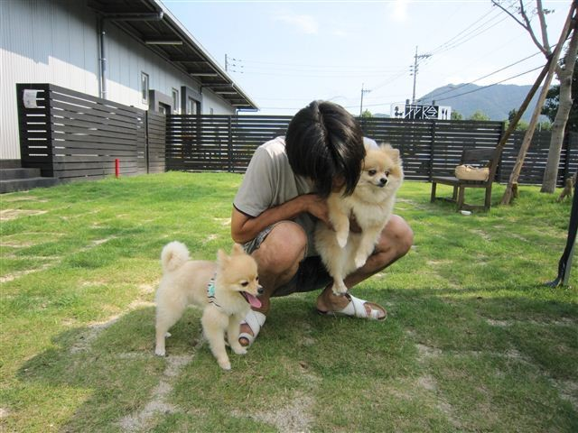 f:id:yasukazu01:20110828151230j:image