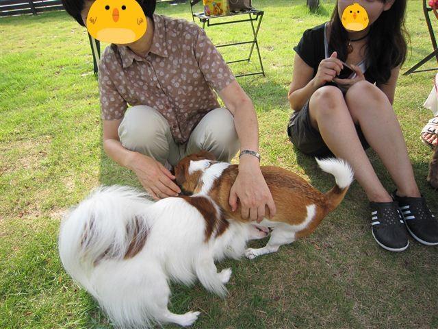 f:id:yasukazu01:20110828151847j:image