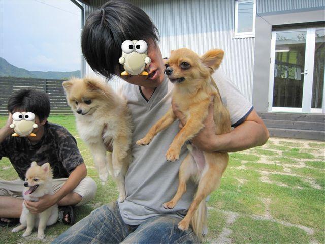 f:id:yasukazu01:20110828152314j:image