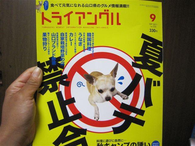 f:id:yasukazu01:20110828204204j:image