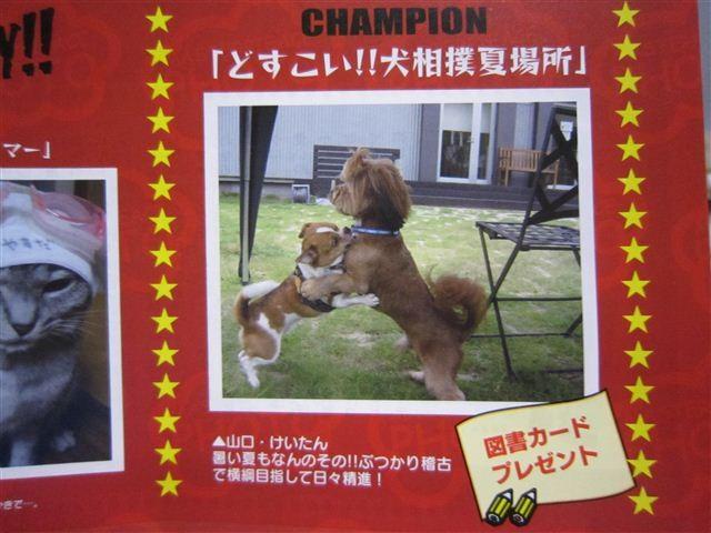 f:id:yasukazu01:20110828204311j:image
