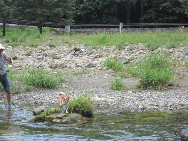 f:id:yasukazu01:20110829132938j:image
