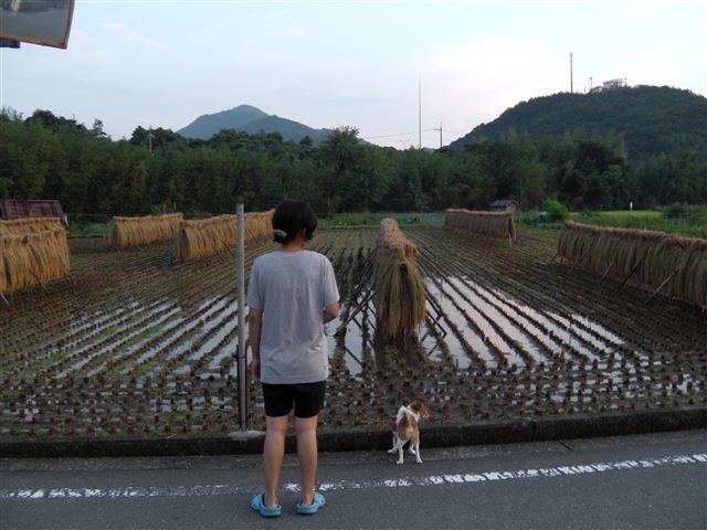 f:id:yasukazu01:20110831183900j:image