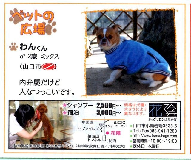 f:id:yasukazu01:20110917134842j:image
