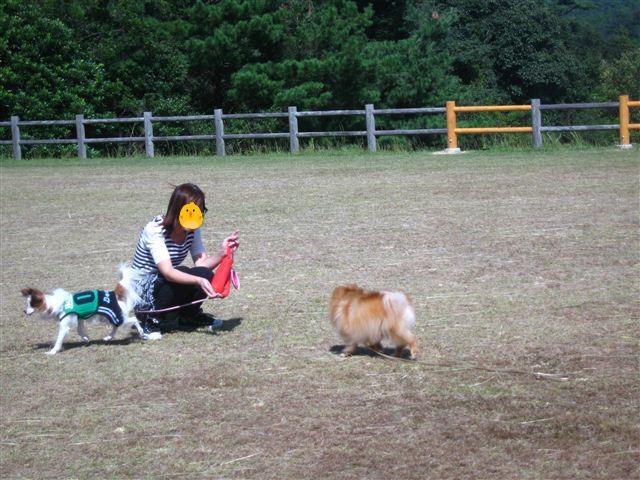f:id:yasukazu01:20110923140313j:image