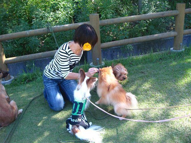 f:id:yasukazu01:20110923145026j:image