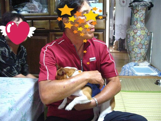 f:id:yasukazu01:20110925145226j:image