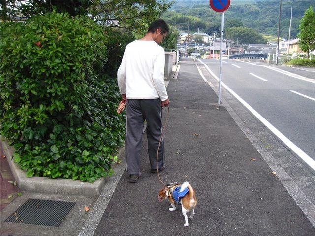 f:id:yasukazu01:20110925155757j:image