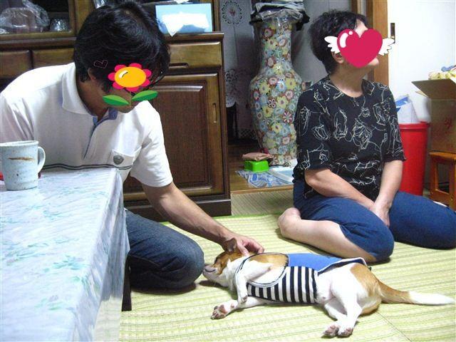 f:id:yasukazu01:20110925172230j:image
