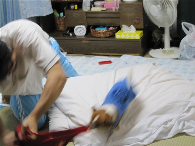 f:id:yasukazu01:20110925191324j:image