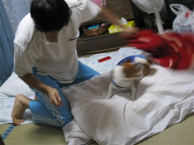 f:id:yasukazu01:20110925191331j:image
