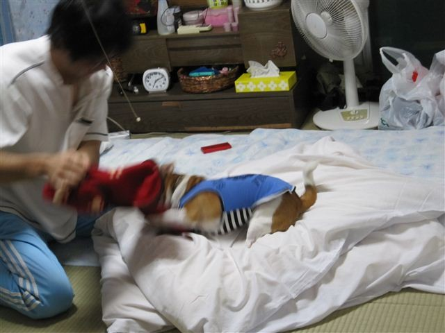 f:id:yasukazu01:20110925191350j:image