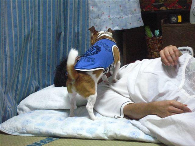 f:id:yasukazu01:20110925195547j:image