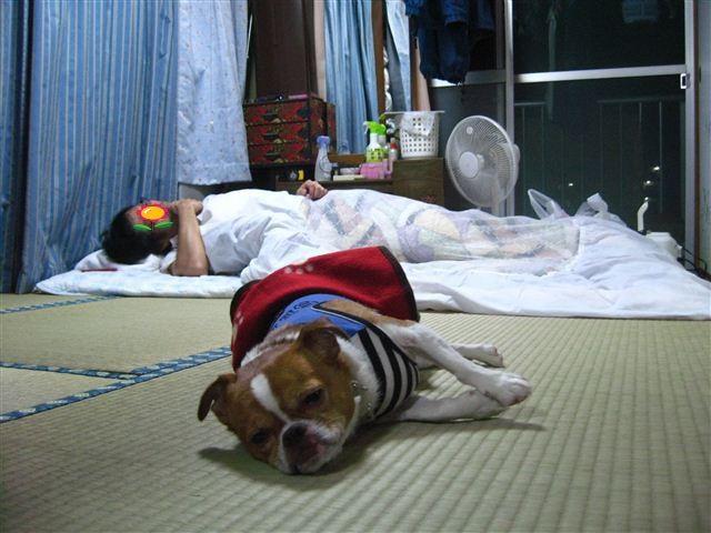 f:id:yasukazu01:20110925200607j:image