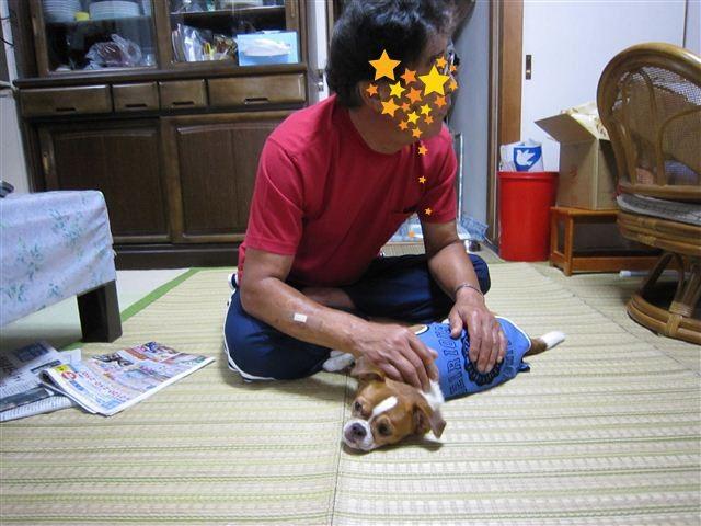 f:id:yasukazu01:20110926071109j:image