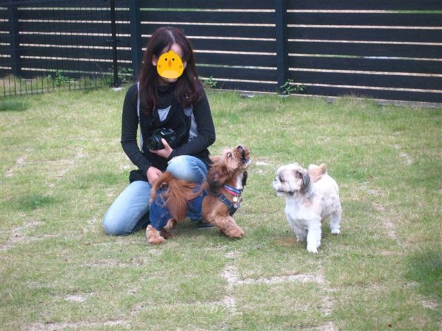 f:id:yasukazu01:20111002104231j:image