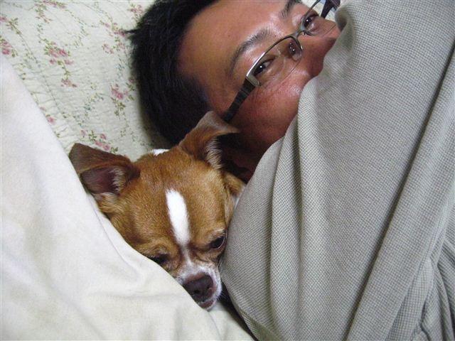 f:id:yasukazu01:20111003202938j:image