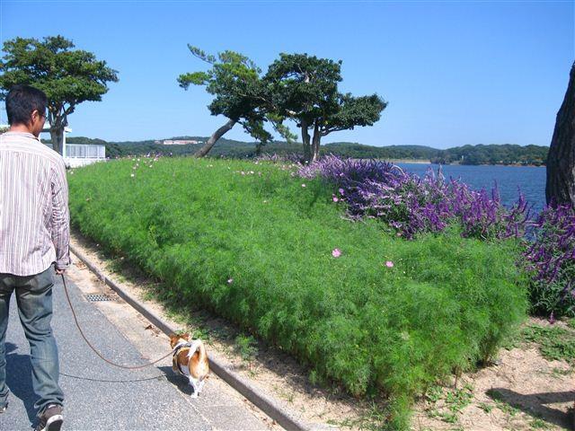 f:id:yasukazu01:20111004113147j:image