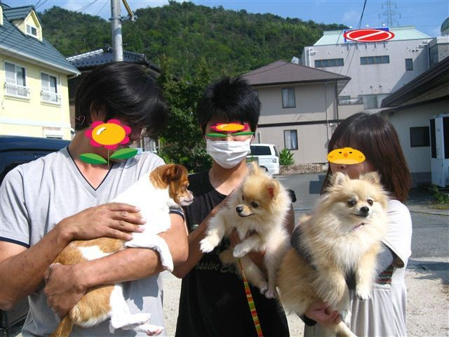 f:id:yasukazu01:20111009133530j:image