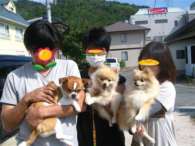 f:id:yasukazu01:20111009133539j:image