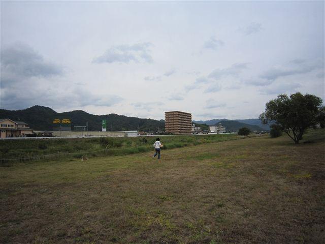 f:id:yasukazu01:20111017123122j:image